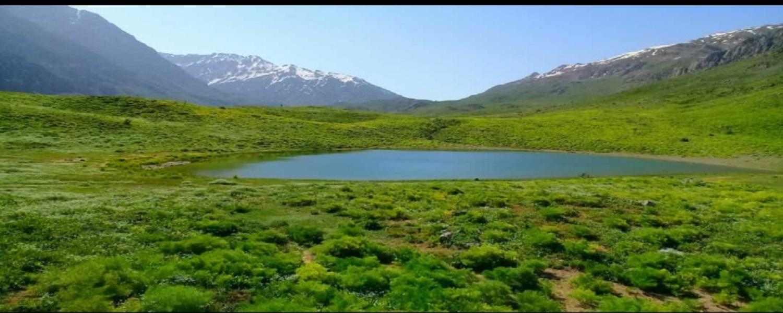 دریاجه کوه گل